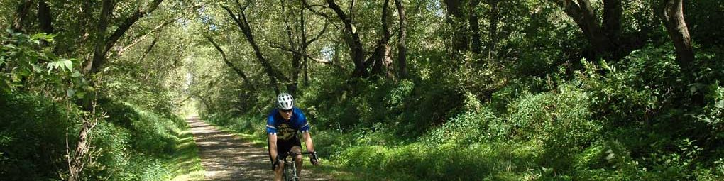 Bicyclist on the Cannon Valley trail
