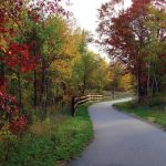 fall along Cuyuna Lakes State Trail