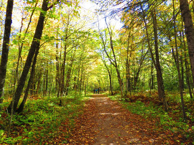 Jay Cooke State Park by Janell Wesenberg