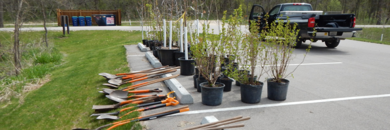 shovels and trees that are ready to be planted