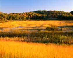Maplewood State Park autumn landscape