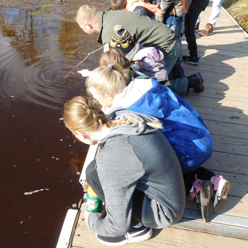 Kids look on as a naturalist tries to find something in the water with a stick