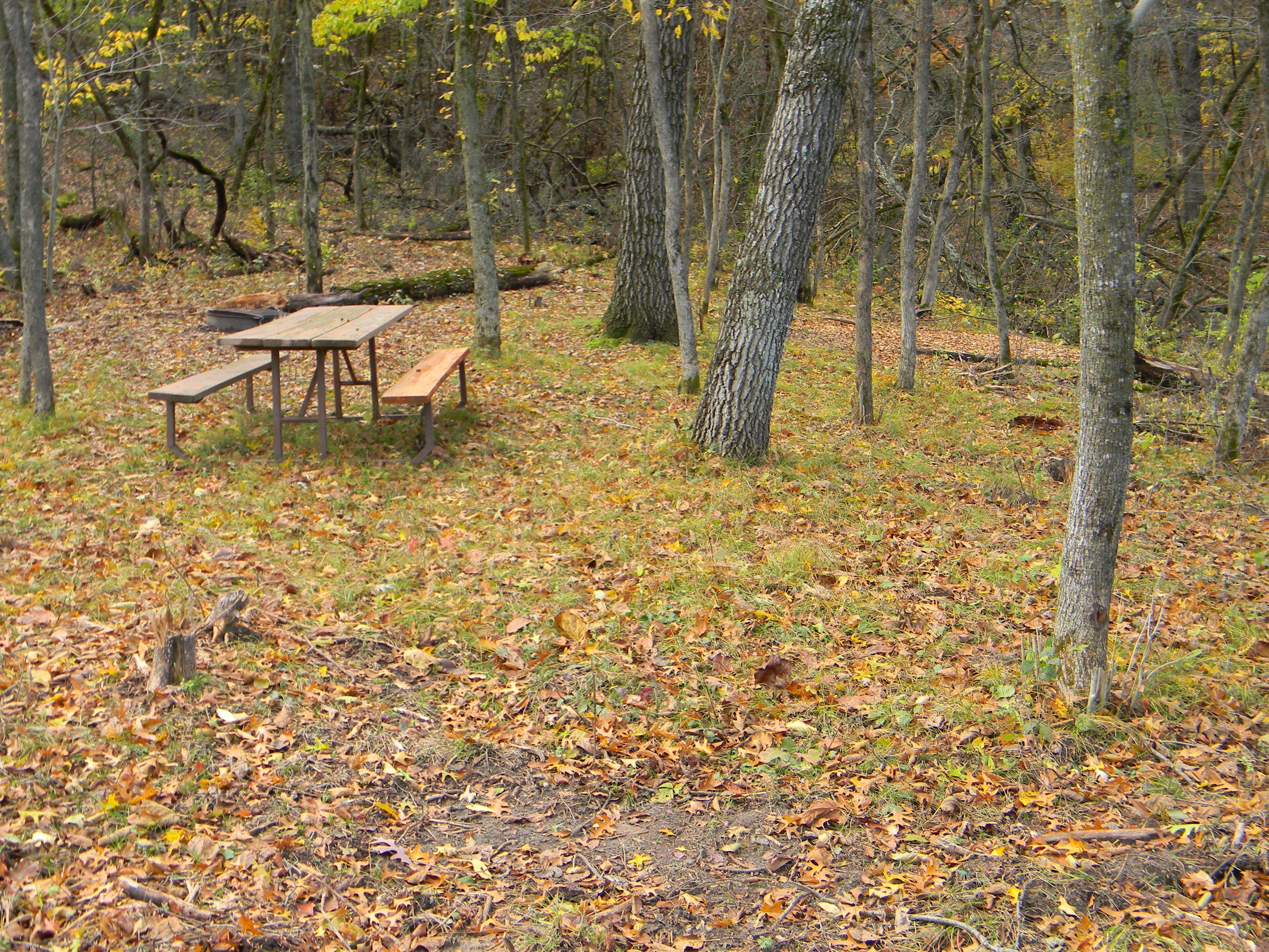 campsite with picnic table in fall
