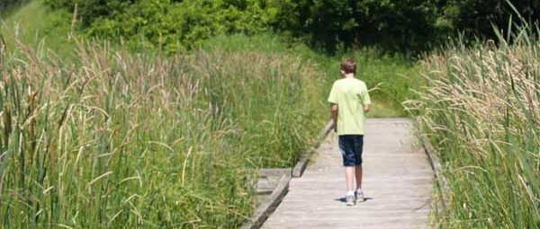 Boy walking on pond boardwalk at Sibley State Park