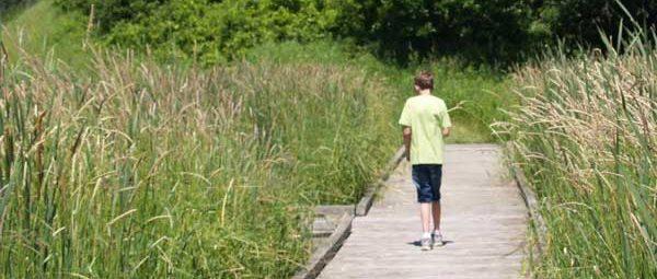 Boy walking on pond boardwalk at Sibley State Park