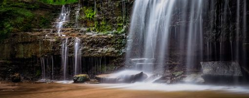 Nerstrand Big Woods State Park. Nerstrand Big Woods. By John Rystad