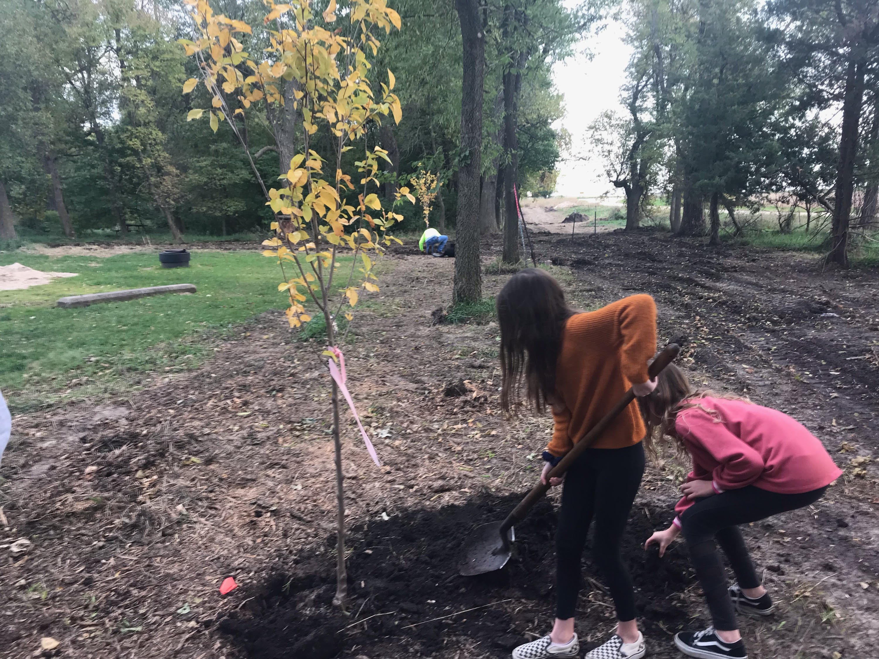 two girls use a shovel to plant a tree