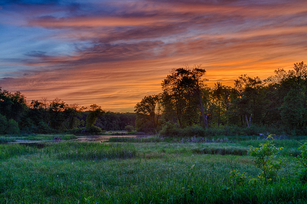 Dramatic sunset over a marsh at Lake Maria State Park