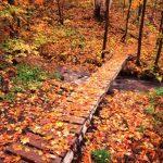 SHT in Tettegouche State Park by Gary Alan Nelson