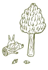 doodle-bunny-trees