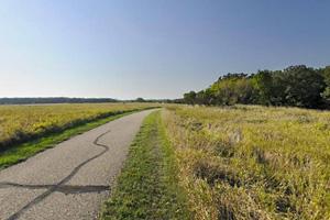 Casey Jones Trail view of open grasslands