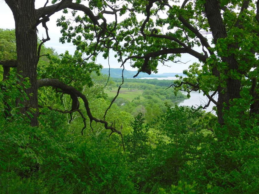 Overlook toward Lake Pepin