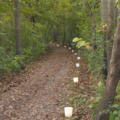 luminaries along a wooded trail
