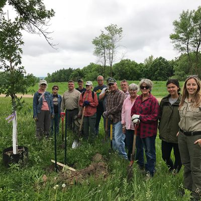 Oak savanna restoration project tree planting on June 2, 2018
