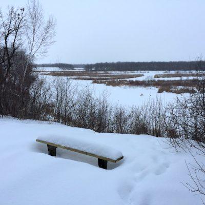 A snowy overlook of a marsh