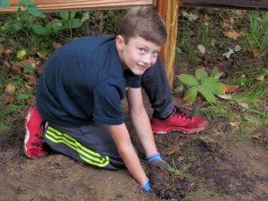 A boy plants a tree