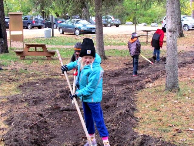 A young girl rakes the soil