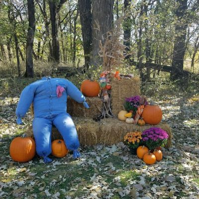 Fall decorations with pumpkins, flowers, and bales