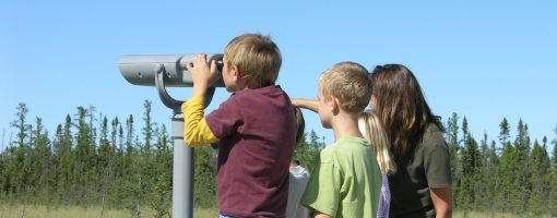 kids looking over bog through binoculars