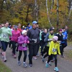runners on a paved trail