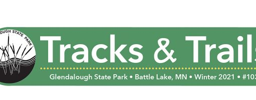 Newsletter masthead reads: Tracks and trails Winter 2021 #103