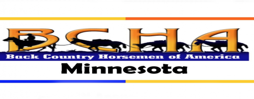 Newsletter header includes Back Country Horsemen logo and horse silhouettes