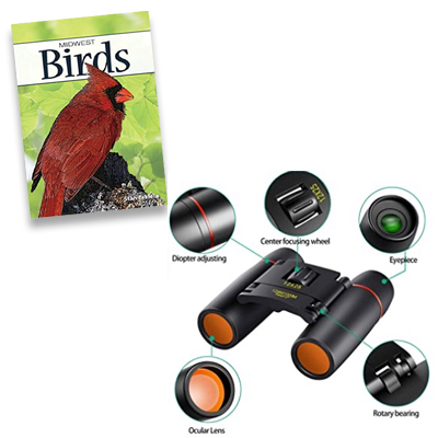 deck of cards and binoculars
