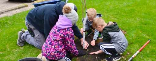 kids filling a hole of a newly planted tree