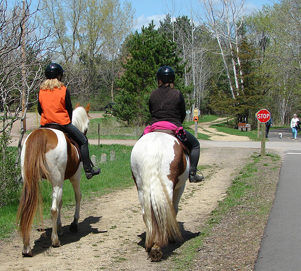 horseback riders on trail