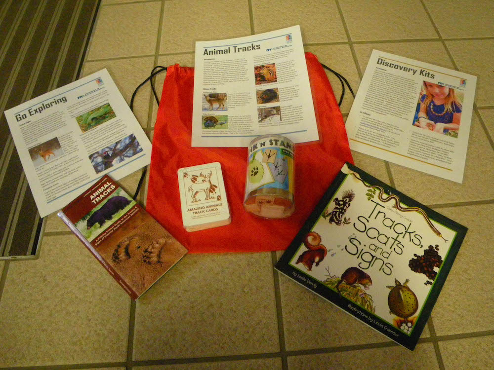 animal tracks activity kit