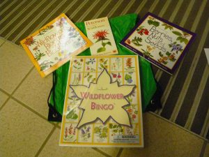 wildflower activity kit