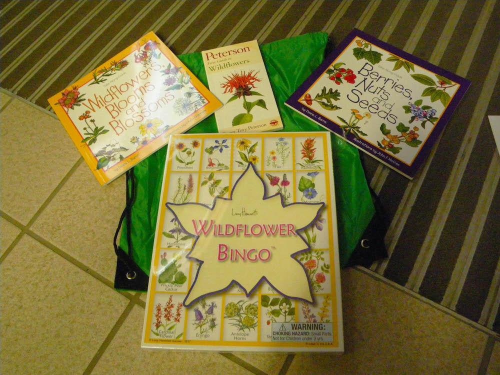 wildflower activity kit