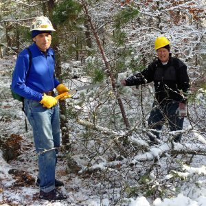 Two volunteers work to clear trail from tree branches with a hand saw