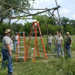 Six people standing around a structure made of branches