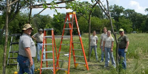 FOCW Annual Meeting & Volunteer Day
