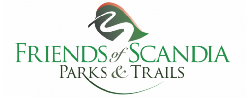 Scandia-newsletter-header