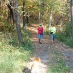 two people walk on a wide hiking trail in the forest