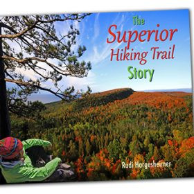 Book cover showing person overlooking forested valley