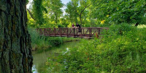 Man and boy on bridge over creek