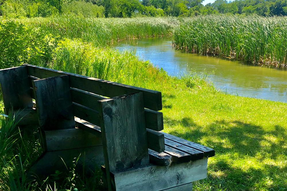 wooden bench alongside a creek