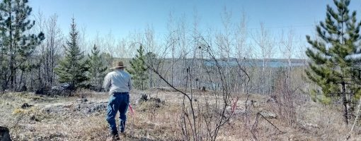 volunteer flagging for environmental assessment