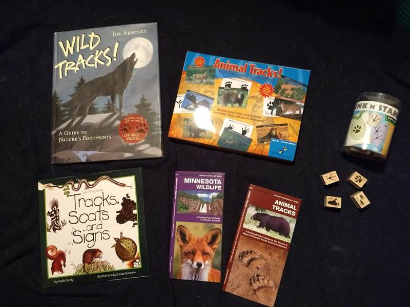 children's books about animal tracks