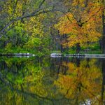 Colorful autumn trees reflecting in lake at Camden State Park