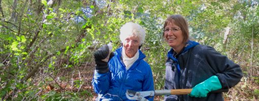 Two women take a quick break from clearing buckthorn