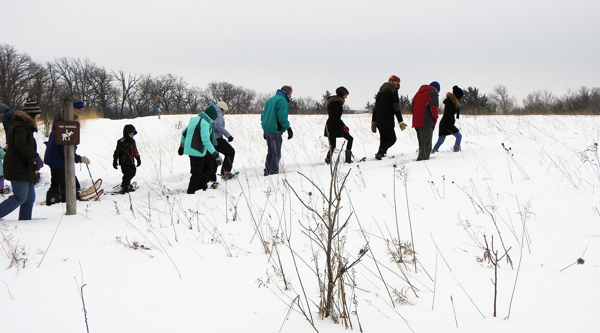 snowshoers walk on the trail in the prairie