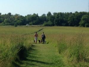 people walking on a mowed path